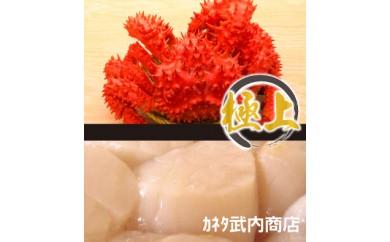 CC-47001 花咲ガニ1.2kg前後×1尾、ホタテ貝柱250g[460091]