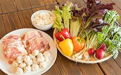 B5-18【野菜ソムリエKANEOKAセレクト】鍋にあう野菜・鶏肉・豆腐 セット(3~5人前)