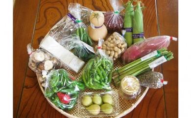 [№5533-0048]採れたて!旬の新鮮野菜 詰め合わせ