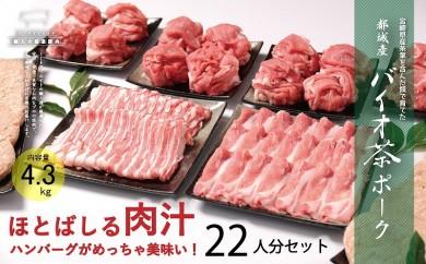 MK-3608_ほとばしる肉汁!ハンバーグがめっちゃうまい!バイオ茶ポーク22人分4.3kgセット