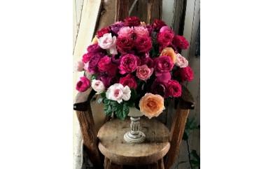 NLo22 お祝い薔薇「祝福のローズギフト」