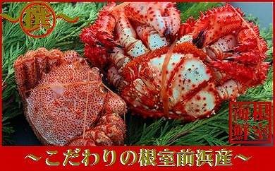 CD-70005 【北海道根室産】毛ガニと花咲ガニメスのセット[460089]