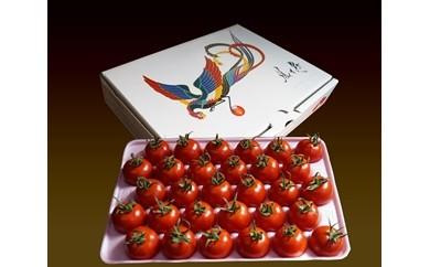 11. フルーツトマト鳳玉舞