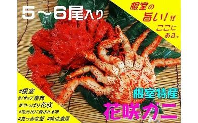 CA-03018 【北海道根室産】花咲ガニ5~6尾(計1.5kg以上)[460079]
