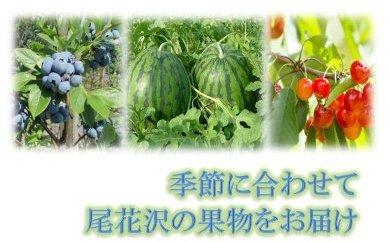 【限定50】尾花沢 果物定期便