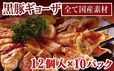 【A-322】肉汁たっぷり!鹿児島県産黒豚ギョーザ10パック