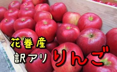 【005】 イーハトーヴ訳ありりんごお試しセット