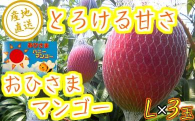 33-09『数量限定』おひさまハニーマンゴー L×3玉【30年発送分】