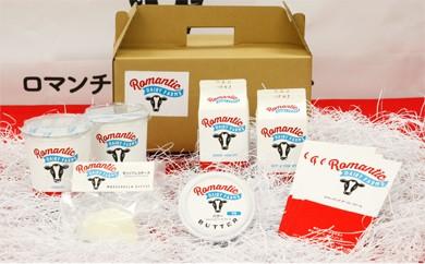 【B2501】昭和村の牧場発、プレミアム乳製品詰め合わせ Bセット