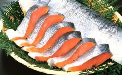 [№5832-0176]紅鮭全切身甘口(無頭)約2kg