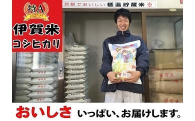 0546【特A評価】伊賀米コシヒカリお届け便・5