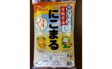 【A-8】 特別栽培米「にこまる」まさき育ち