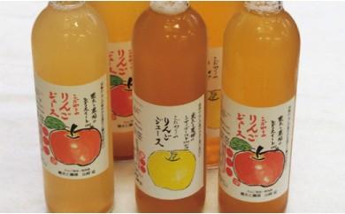 B12 りんごジュース6本セット