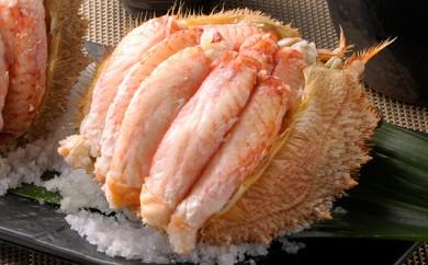 [№5901-0343]毛蟹一杯まるごと♪北海道産毛蟹甲羅盛1個