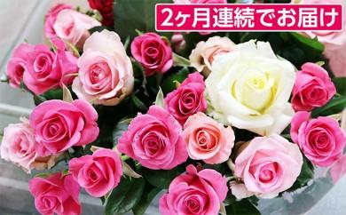 [№5672-0175]2ヶ月連続お届け 生産者直送 有機栽培で育った朝切りバラの花束