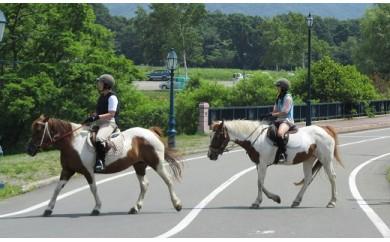 [07-092]乗馬体験60分×2名(初心者向け放牧地コース)
