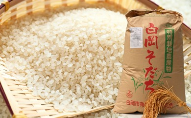 [№5672-0194]特A認定品種 特別栽培米 白岡産彩のきずな10kg