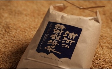 [03-240]浦河の特別栽培米(5kg×2袋)【3月下旬発送】