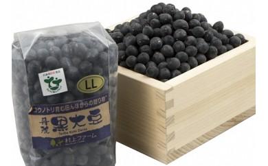 A-7 香り香ばしい!大粒『丹波黒大豆』400g【2017年度産】