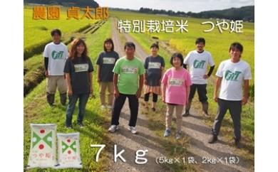 NA315 平成29年産 特別栽培米農園貞太郎のつや姫7kg