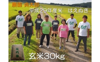 NE13 平成29年産米 農園貞太郎のはえぬき(玄米)30kg