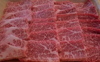 [№5538-0049]日光高原牛特撰牛カルビ焼肉用500g入