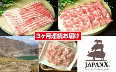 [№5800-0126]【3ヶ月連続】蔵王産JAPAN X3種スライスセット2.8kg(バラ肩ロース小間)