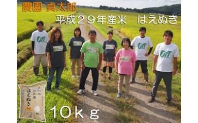 NA316 平成29年産 農園貞太郎のはえぬき10kg
