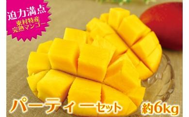 【パーティーセット】超~ど迫力!東村特産完熟マンゴー約6kg(約2kg×3箱)