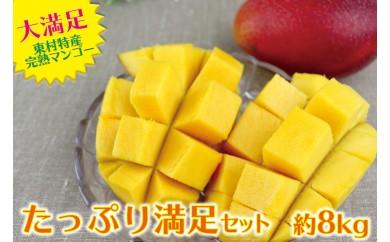 【たっぷり満足セット!】東村特産完熟マンゴー圧巻の約8kg(約2kg×4箱)
