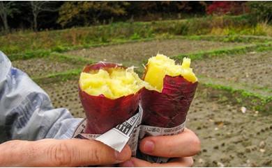 蜜がしたたる北海道産さつまいも「紅はるか」3kg