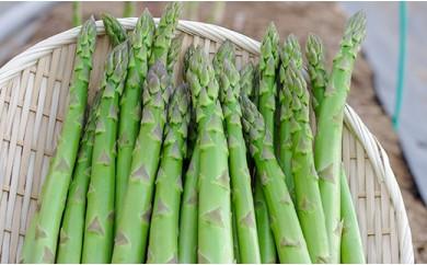 大地の恵み「春一番!グリーンアスパラガス」1kg