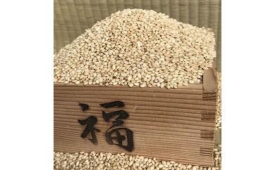 AG-9 おお槻農園のマンゲツモチ(玄米)10㎏