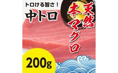 ti798 【スーパータイムセール】年末限定!!天然本マグロの中トロ200g 寄付額6,000円
