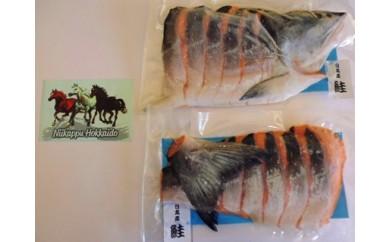 38 秋鮭セット 15,000円