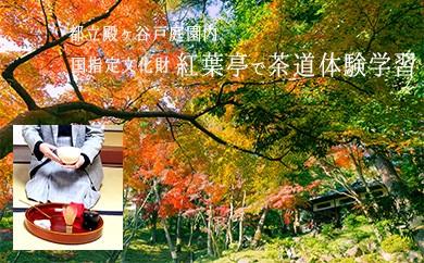 3-6 国指定名勝,東京の名湧水57選に選定された 都立殿ヶ谷戸庭園内の茶室(紅葉亭)で茶道体験学習