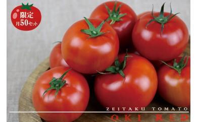 【限定!月50セット】東村で採れたあま~い『ぜいたくトマト』約1.5キロ