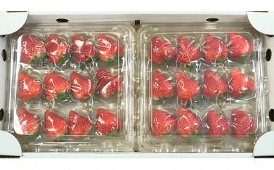 [№5905-0109]完熟イチゴ(9玉×2パック)