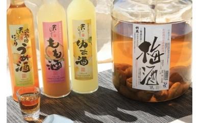 E-16 あさご果実酒三昧…2酒蔵の果実酒セット