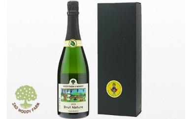 0062-105 スパークリングワイン1本【ブリュット・ナチュール13】