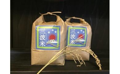 B-89【減農薬】竹田城跡からの朝日を受けて育った三波産コシヒカリ4㎏