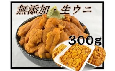 B254 無添加!「生食用うに」たっぷり300g!