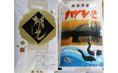 【10031】岐阜県産 ハツシモ・コシヒカリ白米各5kg
