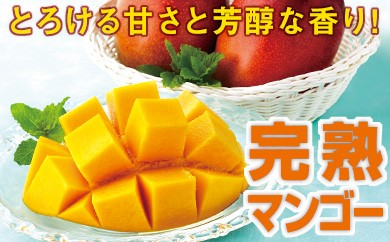 【A-340】とろける甘さ!完熟マンゴー1kg
