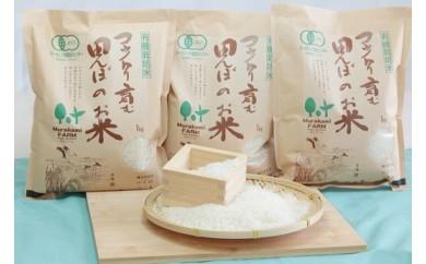 B-49 農薬・化学合成肥料を使用していない有機JAS認定米!!!コウノトリを育む田んぼのお米1kg×3袋