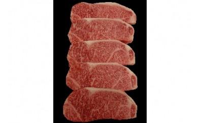 0002-108 山形牛焼肉満腹セット 焼肉のタレ付き