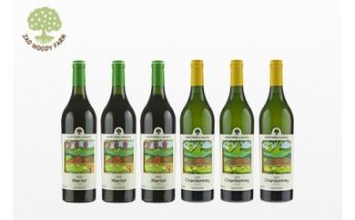 0062-111 本格ワイン赤白飲み比べ 6本セット
