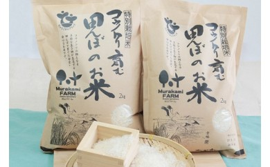 B-20【特別栽培米】コウノトリ育む田んぼのお米 2kg×2袋