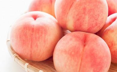 [№5915-0274]信州小諸産「浅間水蜜桃」みつおかのもも約5kg【あかつき】