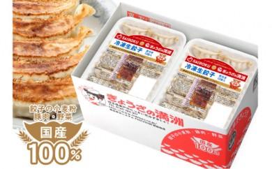 C-01 プレミアム冷凍餃子120個(サイボクハム×ぎょうざの満洲)